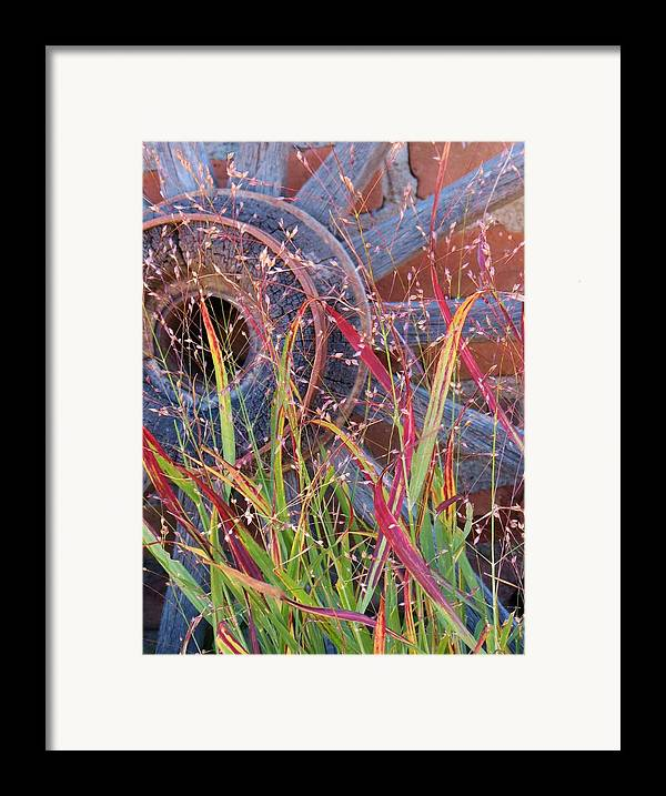 Fall;fallcolors;grass;pinos Altos;new Mexico Framed Print featuring the photograph Dance Of The Wild Grass by Feva Fotos