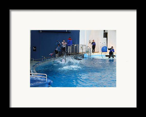Inner Framed Print featuring the photograph Dolphin Show - National Aquarium In Baltimore Md - 121292 by DC Photographer