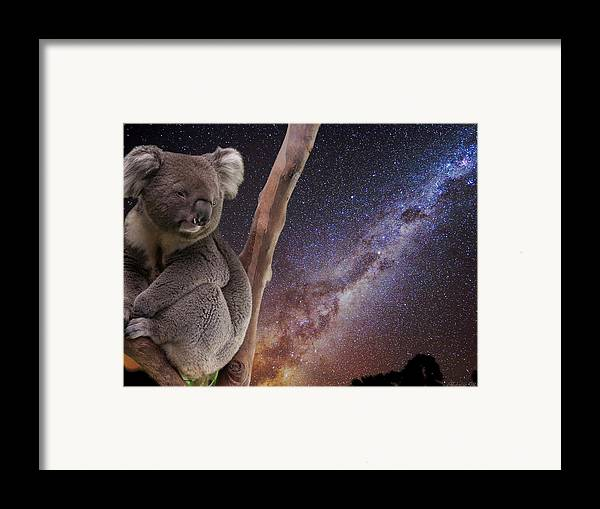 Australia Framed Print featuring the photograph Down Under by Charles Warren