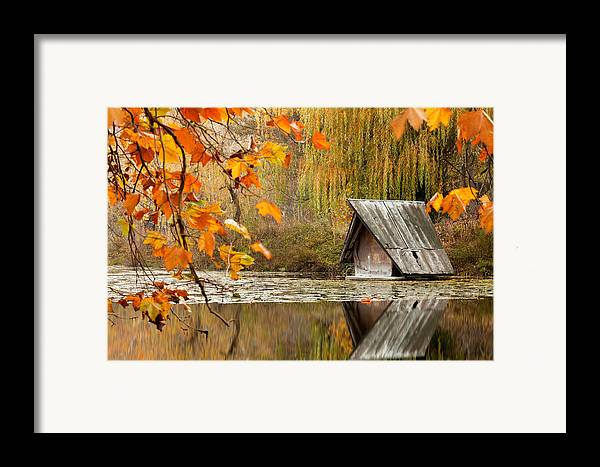 Dawn Framed Print featuring the photograph Duck's House by Evgeni Dinev