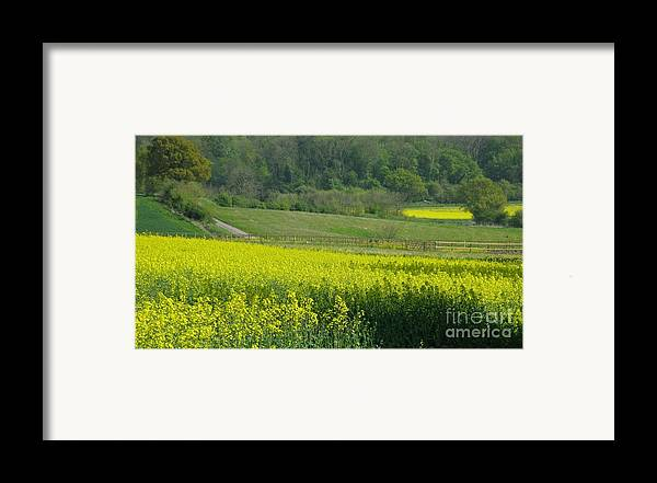 England Framed Print featuring the photograph English Countryside by Ann Horn