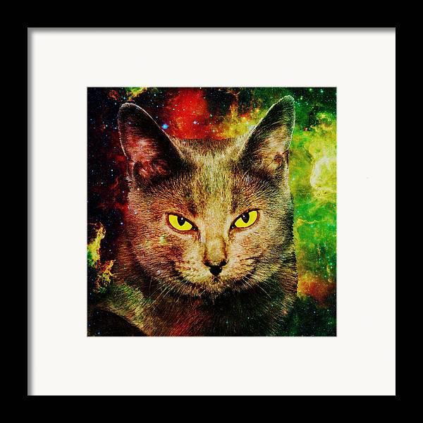 Malakhova Framed Print featuring the digital art Eye Contact by Anastasiya Malakhova