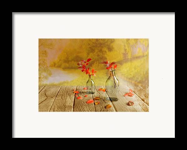 Art Framed Print featuring the photograph Fallen Leaves by Veikko Suikkanen
