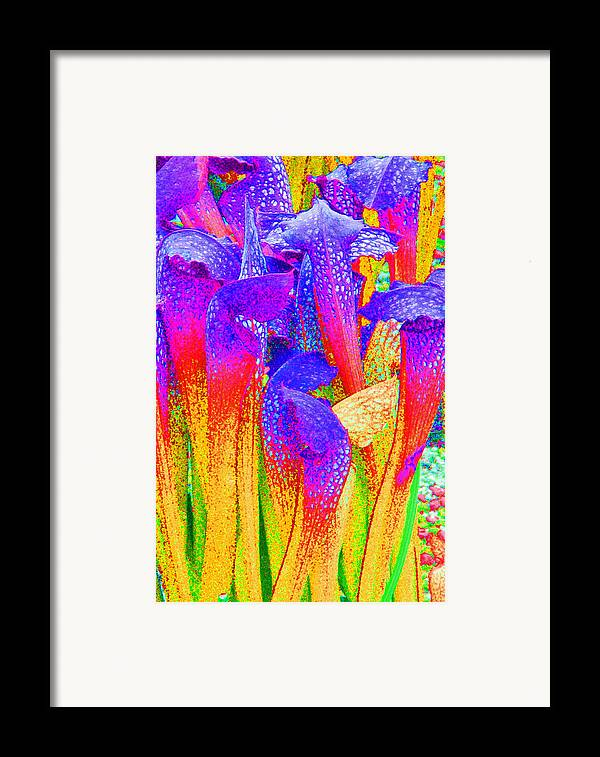Fantasy Framed Print featuring the photograph Fantasy Flowers by Margaret Saheed