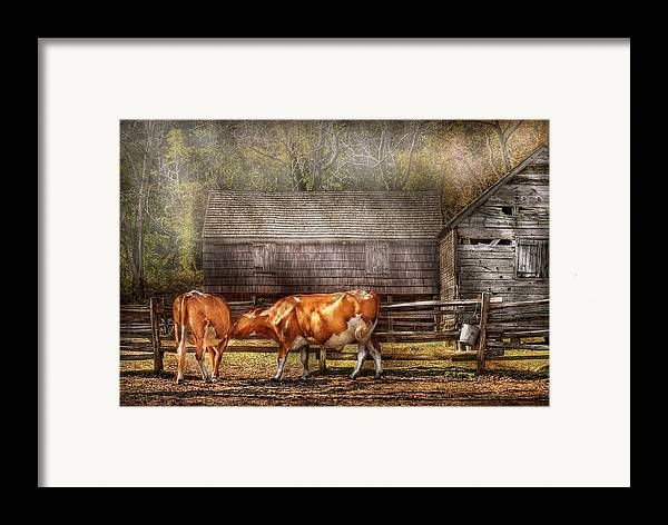 Savad Framed Print featuring the photograph Farm - Cow - A Couple Of Cows by Mike Savad