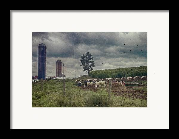 Farm Framed Print featuring the photograph Farm Landscape by Kathy Jennings