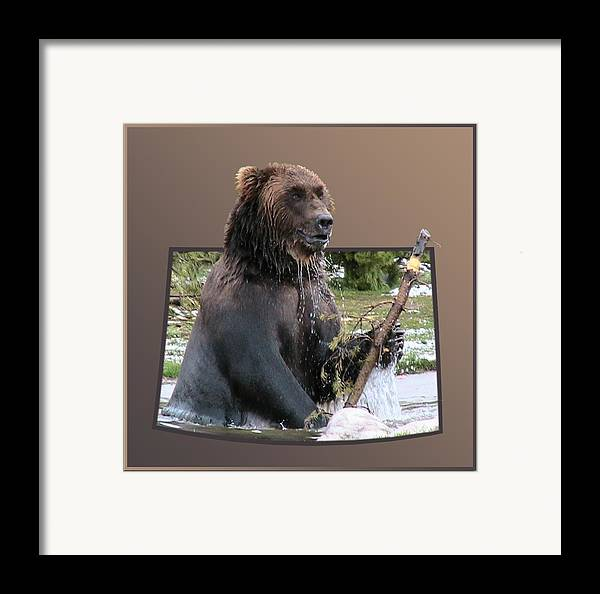 Animals Framed Print featuring the photograph Grizzly Bear 6 Out Of Bounds by Thomas Woolworth