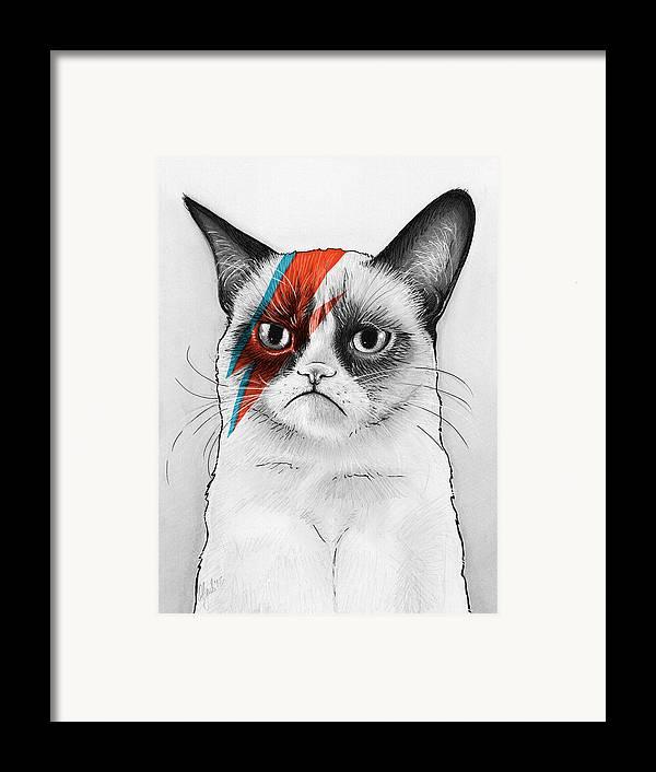 Grumpy Cat Framed Print featuring the drawing Grumpy Cat As David Bowie by Olga Shvartsur