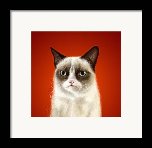 Grumpy Framed Print featuring the digital art Grumpy Cat by Olga Shvartsur