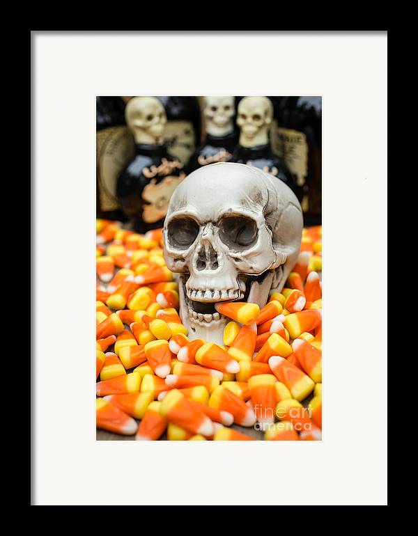 Buffet Framed Print featuring the photograph Halloween Candy Corn by Edward Fielding