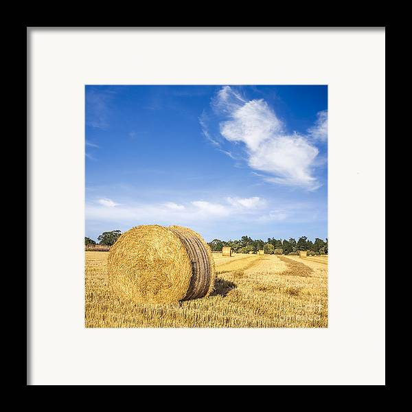 Bales Framed Print featuring the photograph Hay Bales Under Deep Blue Summer Sky by Colin and Linda McKie