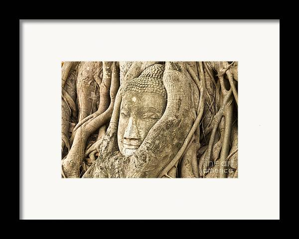 Ancient Framed Print featuring the photograph Head Of Buddha Ayutthaya Thailand by Colin and Linda McKie