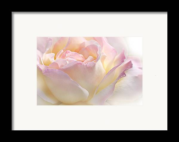 Rose Framed Print featuring the photograph Heaven's Pink Rose Flower by Jennie Marie Schell
