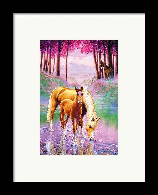 Andrew Farley Framed Print featuring the photograph Horse And Foal by Andrew Farley