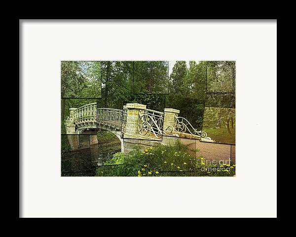 In The Park Framed Print featuring the photograph In The Park by Elena Nosyreva