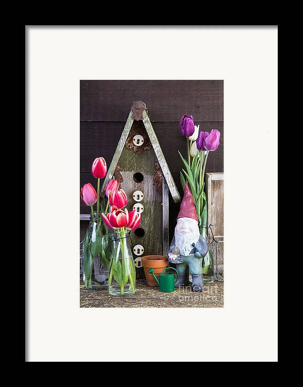Barn Framed Print featuring the photograph Inside The Garden Shed by Edward Fielding