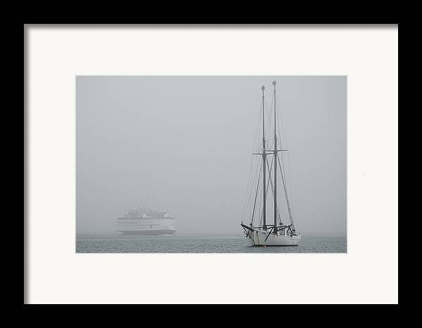 Fog Framed Print featuring the photograph Into The Fog by Steve Myrick