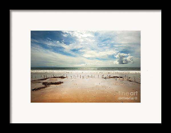 Gaviota Framed Print featuring the photograph It Was A Sunny Day At The Beach From The Book My Ocean by Artist and Photographer Laura Wrede