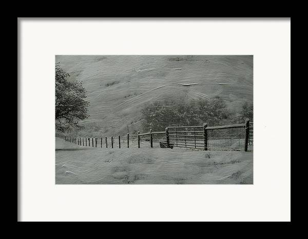 Snow Framed Print featuring the photograph January Storm by Kathy Jennings