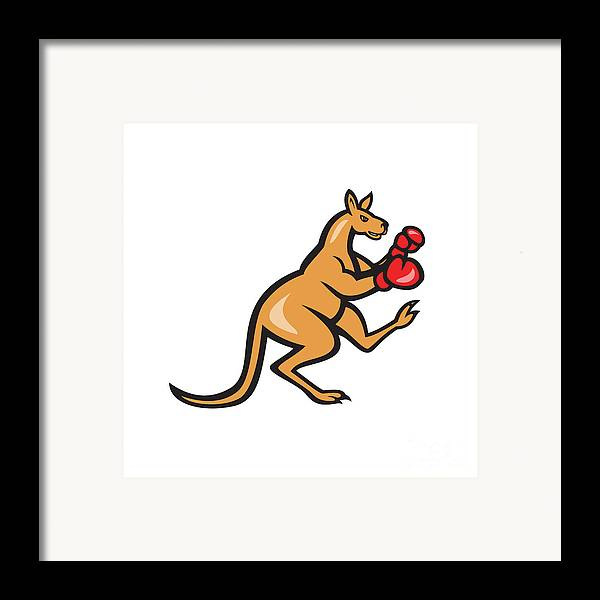 Kangaroo Framed Print featuring the digital art Kangaroo Kick Boxer Boxing Cartoon by Aloysius Patrimonio