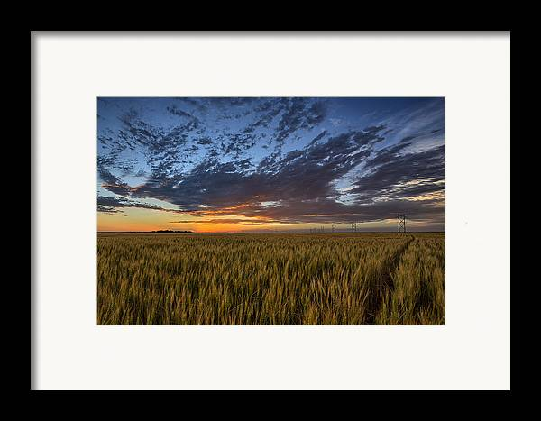 Kansas Framed Print featuring the photograph Kansas Color by Thomas Zimmerman