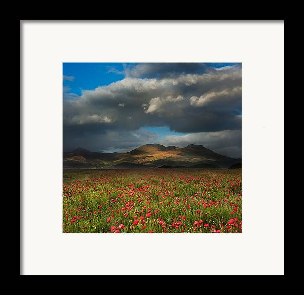 Landscape Framed Print featuring the photograph Landscape Of Poppy Fields In Front Of Mountain Range With Dramat by Matthew Gibson