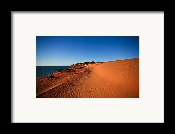 Australia Framed Print featuring the photograph Life by Shari Mattox