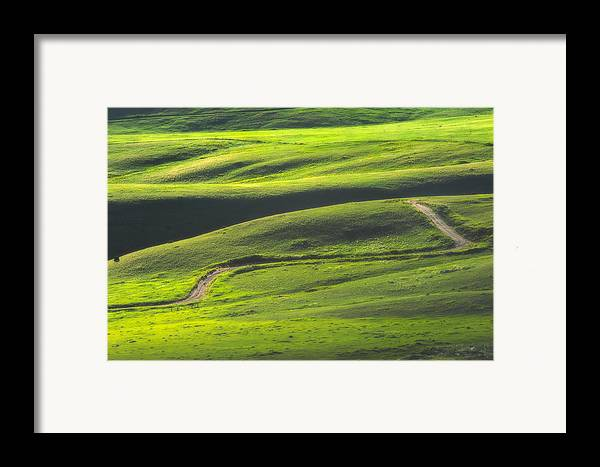 Green Framed Print featuring the photograph Luminous Green by Joan Herwig