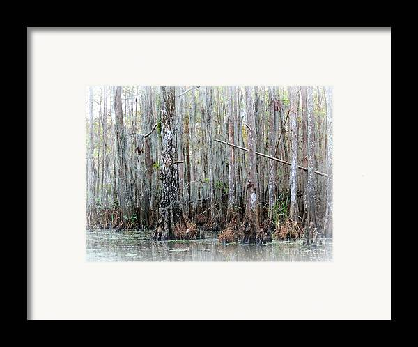 Louisiana Framed Print featuring the photograph Magical Bayou by Carol Groenen