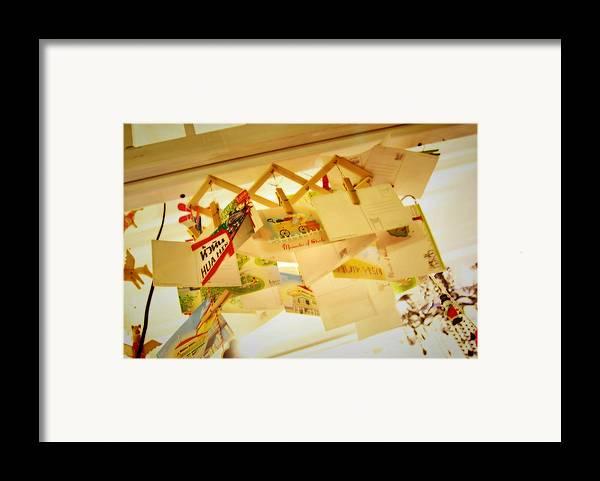 Cicada Framed Print featuring the photograph Memory Of Cicada by Suradej Chuephanich