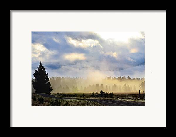 Landscape Framed Print featuring the photograph Misty Spring Morning by Annie Pflueger