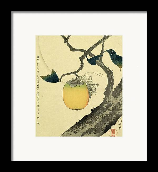 Japanese Framed Print featuring the drawing Moon Persimmon And Grasshopper by Katsushika Hokusai