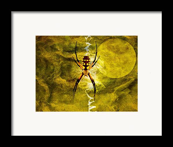 J Larry Walker Framed Print featuring the digital art Moonlit Web by J Larry Walker