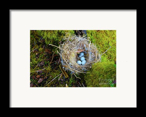 Mother Framed Print featuring the photograph Mother Of Four by Laura Brightwood