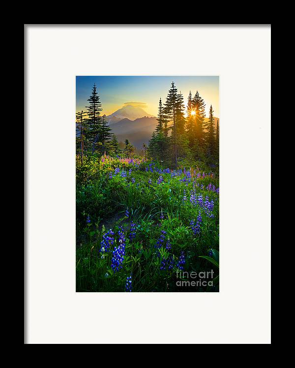 America Framed Print featuring the photograph Mount Rainier Sunburst by Inge Johnsson