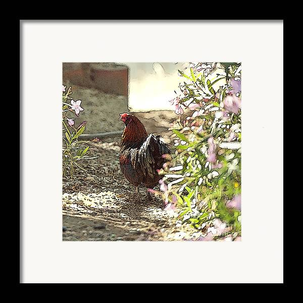 Rooster Art Framed Print featuring the painting Mr. Rooster Takes A Stroll by Artist and Photographer Laura Wrede