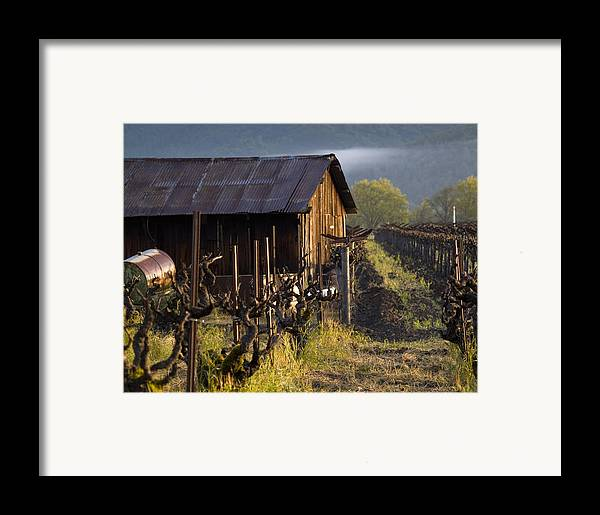 Napa Framed Print featuring the photograph Napa Morning by Bill Gallagher