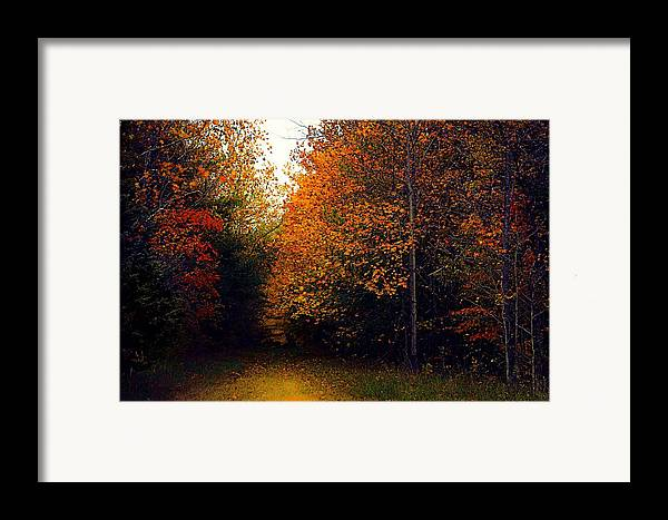 Autumn Framed Print featuring the photograph On Jan's Farm by Julie Dant