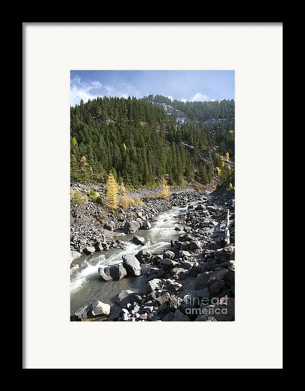 Color Framed Print featuring the photograph Oregon Wilderness II by Peter French