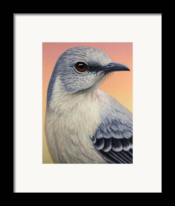 Mockingbird Framed Print featuring the painting Portrait Of A Mockingbird by James W Johnson