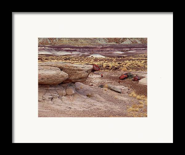 Jim Framed Print featuring the photograph Purple Earth by James Peterson