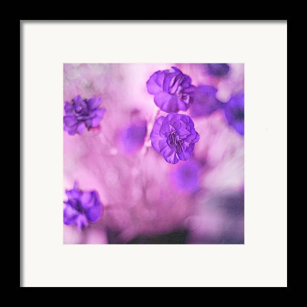 Pretty Flowers Framed Print featuring the photograph Purple Flowers by Marisa Horn