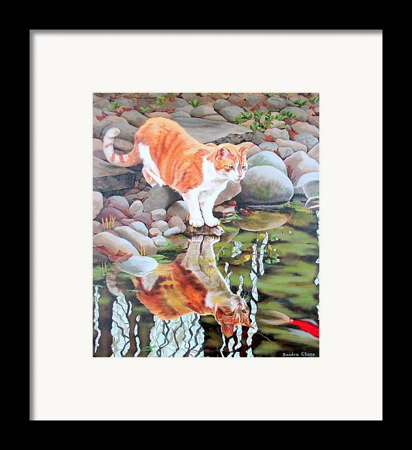 Cat Framed Print featuring the painting Reflecting by Sandra Chase