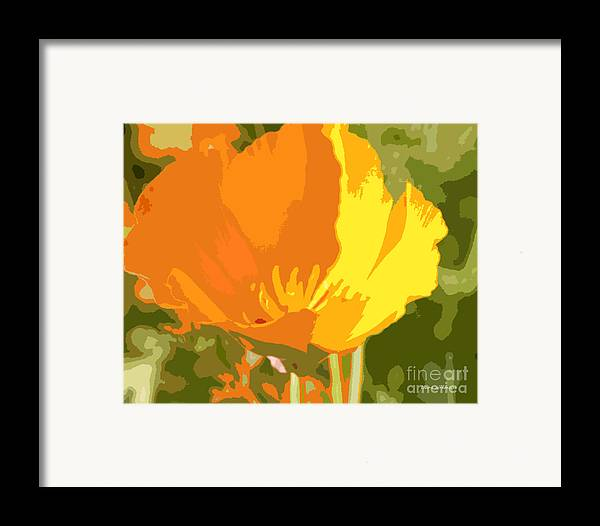 Bstract California Poppies Photographs Framed Print featuring the photograph Retro Abstract Poppies 2 by Artist and Photographer Laura Wrede