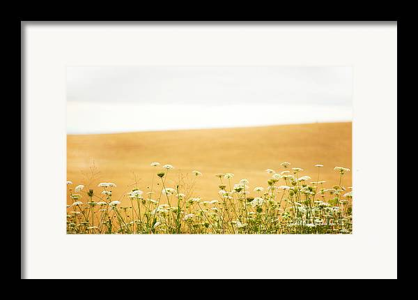 Grassy Hill Framed Print featuring the photograph Run With Me Through A Field Of Wild Flowers by Artist and Photographer Laura Wrede