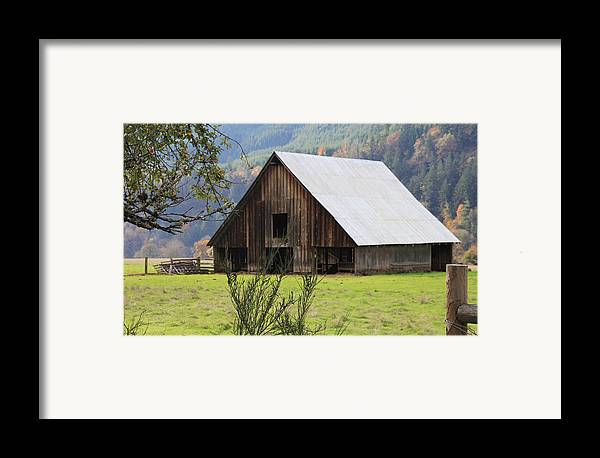 Wood Framed Print featuring the photograph Sheep Barn by Katie Wing Vigil