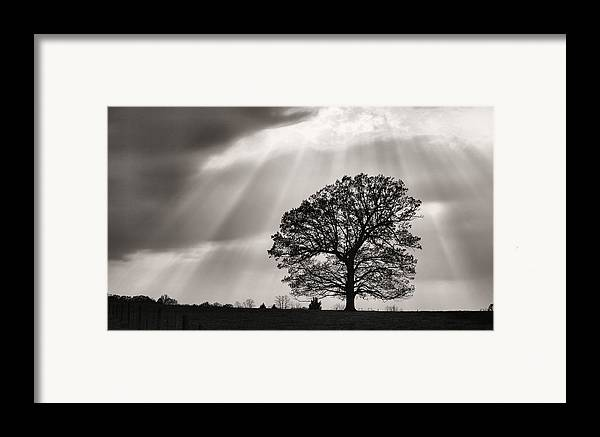Shining Down Framed Print featuring the photograph Shining Down by JC Findley