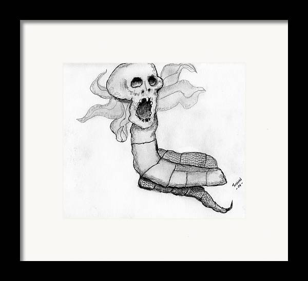 Human Skull Framed Print featuring the drawing Skull Snake by Dan Twyman