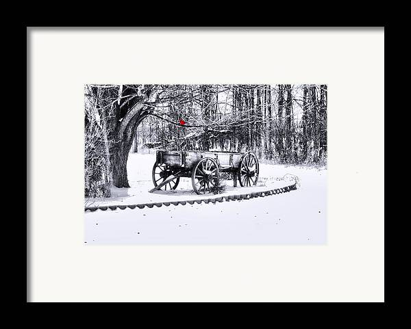 Winter Scene. Winter Landscape. Snow Landscape. Black And White. Birds Framed Print featuring the photograph Snow Bound by Mary Timman