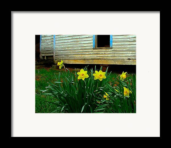 Spring Framed Print featuring the photograph Spring At The Old Home Place by Julie Dant